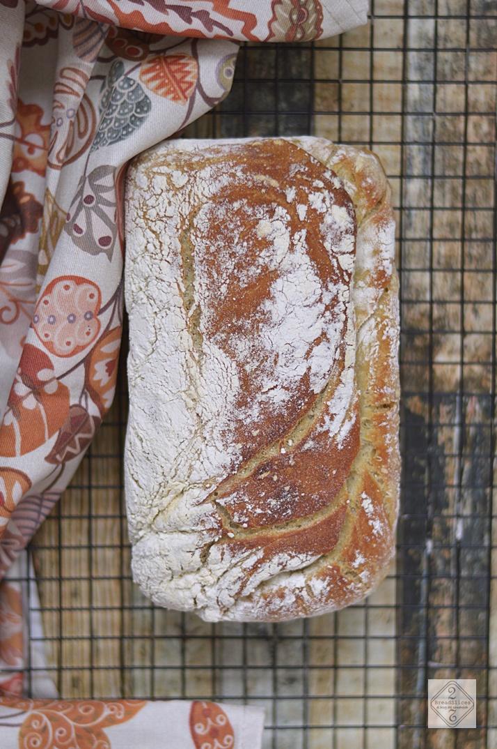 Pan de Limón y Romero